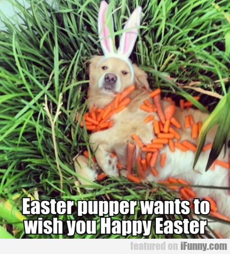 Easter Pupper Wants To Wish You Happy Easter