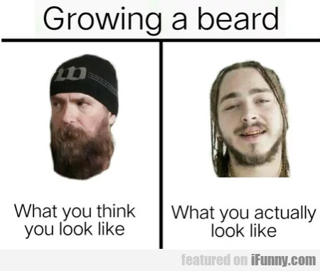 Growing A Beard - What You Think You Look Like...
