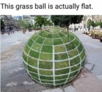 This Grass Ball Is Actually Flat