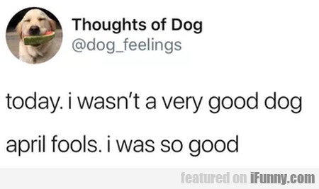 Today. I Wasn't A Very Good Dog April Fools...