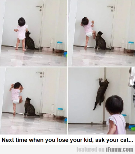 Next Time When You Lose Your Kid, Ask Your Cat...