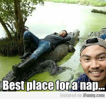 Best Place For A Nap
