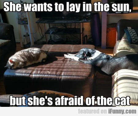 She Wants To Lay In The Sun, But She's Afraid Of..
