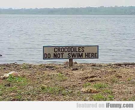 Crocodiles Do Not Swim Here