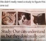 We Didn't Really Need A Study To Figure This...