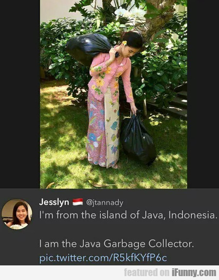I'm From The Island Of Java, Indonesia - I Am...