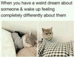 When You Have A Weird Dream About Someone...