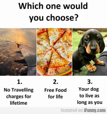 Which One Would You Choose?