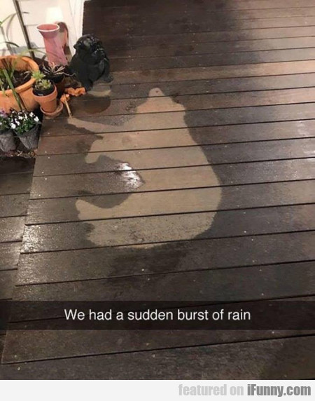 We Had A Sudden Burst Of Rain