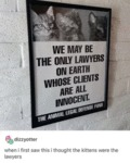 We May Be The Only Lawyers On Earth Whose...