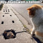Hey, Do You Want A Balloon?