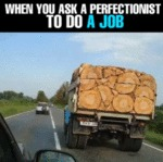 When You Ask A Perfectionist To Do A Job