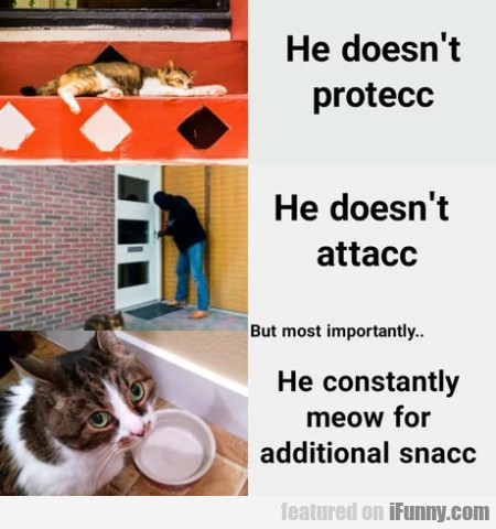 He Doesn't Protecc - He Doesn't Attacc...