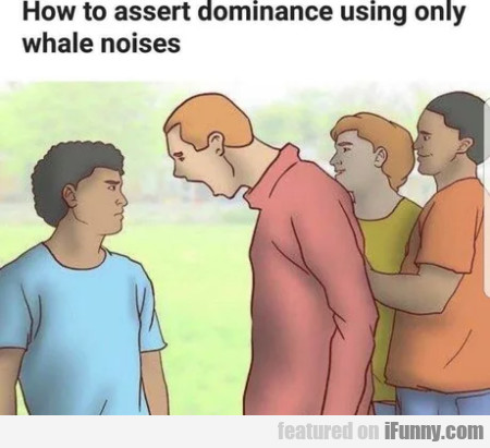 How To Assert Dominance Using Only Whale Noises
