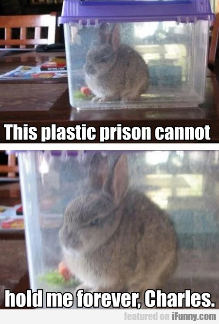 This Plastic Prison Cannot Hold Me Forever...