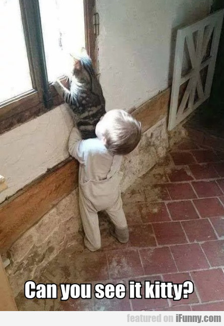 Can You See It Kitty?