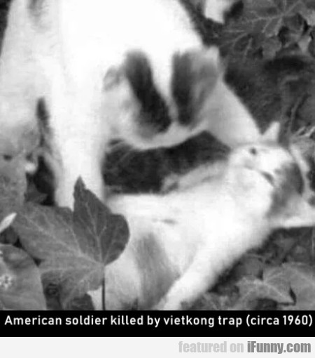 American Soldier Killed By A Vietkong Trap...