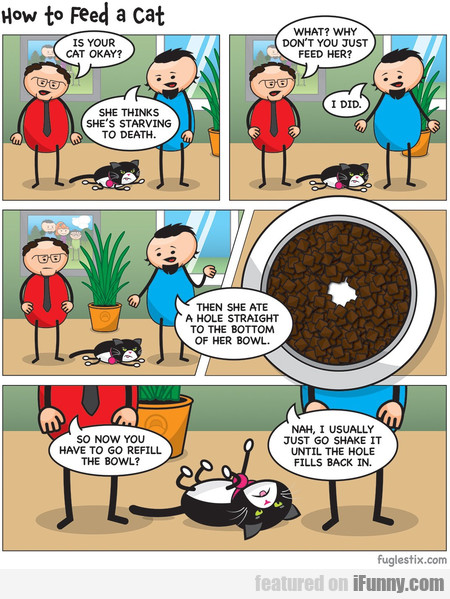 Is Your Cat Okay? She Thinks She's Starving To...