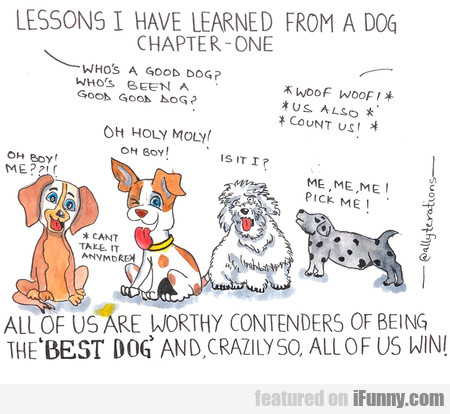 Lessons I Have Learned From A Dog - Chapter One -