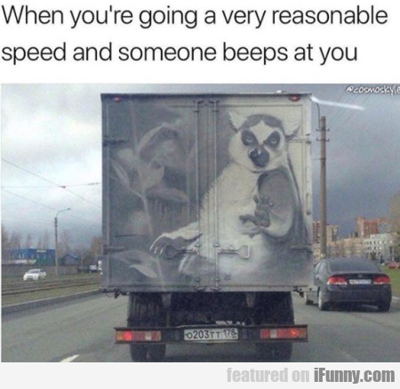 When You're Going A Very Reasonable Speed...