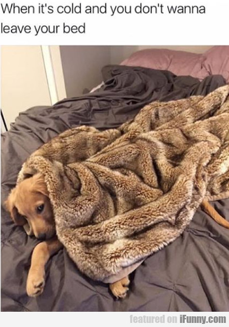 When It's Cold And You Don't Wanna Leave...