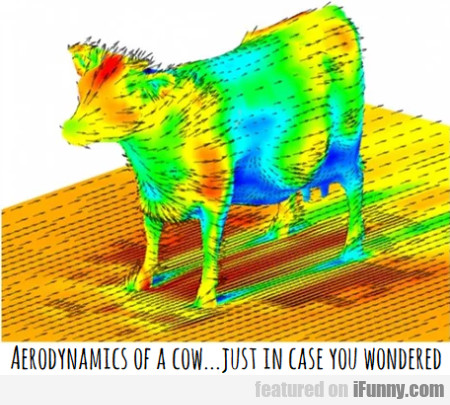 Aerodynamics Of A Cow... Just In Case You...