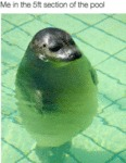 Me In The 5ft Section Of The Pool