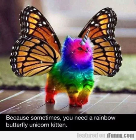 Because Sometimes, You Need A Rainbow Butterfly...