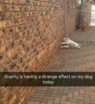 Gravity Is Having A Strange Effect
