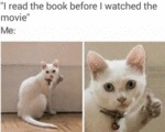 I Read The Book Before I Watched The Movie...