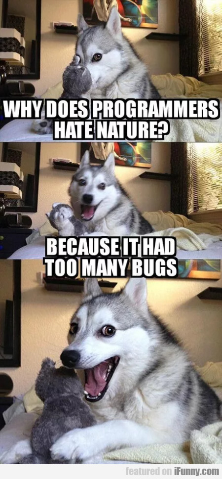 Why Does Programmers Hate Nature - Because It...
