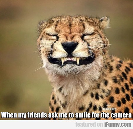 When My Friends Ask Me To Smile For The Camera...