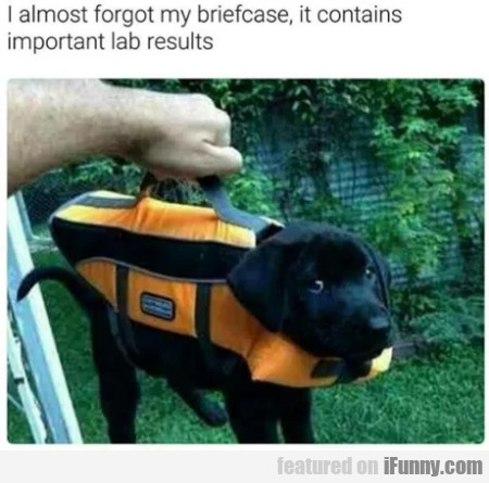 I Almost Forgot My Briefcase, It Contains...