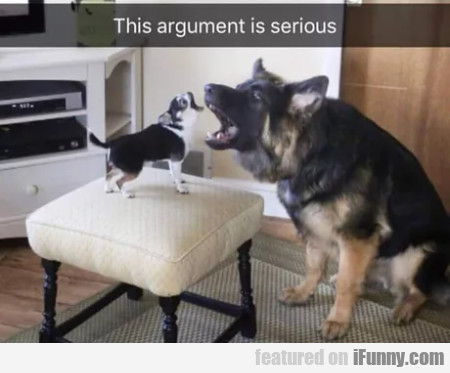 This Argument Is Serious...