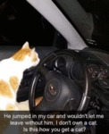 He Jumped In My Car And Wouldn't Let Me...