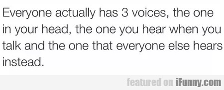 Everyone actually has 3 voices, the one in your...