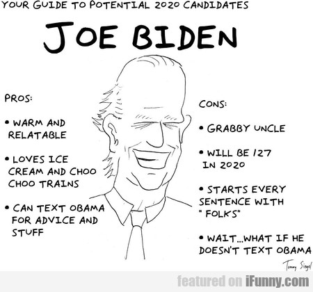 your guide to potential 2020 candidates: joe biden