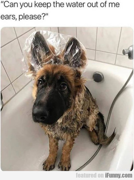 Can You Keep The Water Out Of Me Ears, Please?