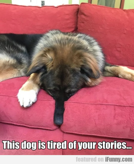 This Dog Is Tired Of Your Stories