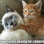 Two Cuties Posing For Camera