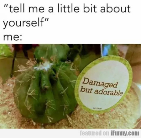 Tell Me A Little Bit About Yourself