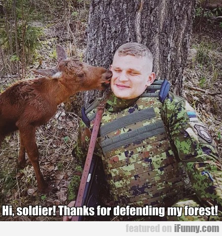 Hi, Soldier! Thanks For Defending My Forest!