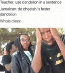 Teacher - Use Dandelion In A Sentence - Jamaican..