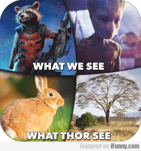 What We See - What Thor See