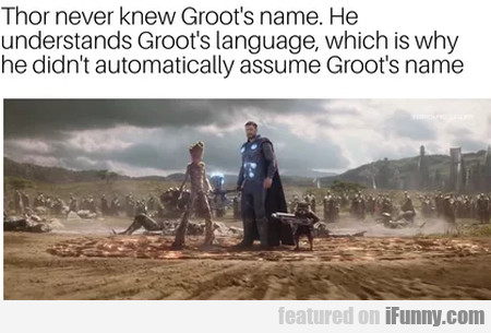 Thor never knew Groot's name. He understands...