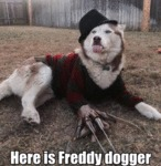 Here Is Freddy Dogger