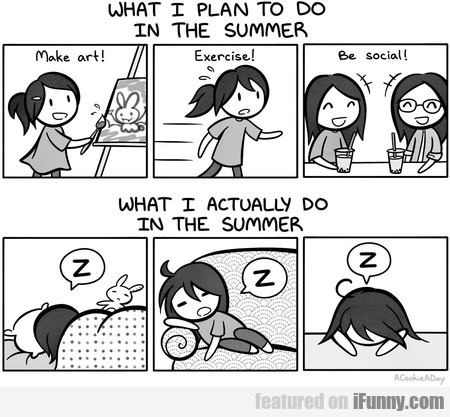 What I Plan To Do In The Summer