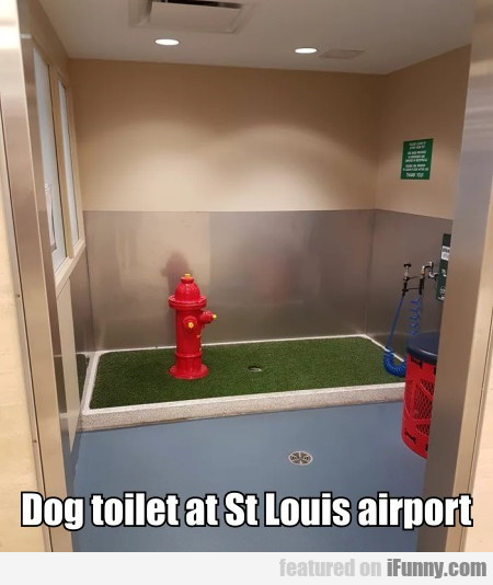 Dog Toilet At St Louis Airport