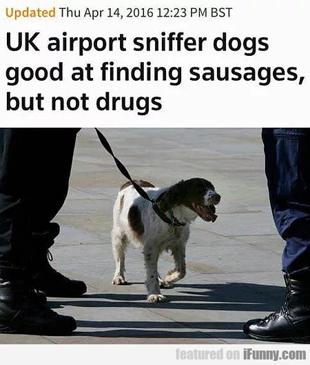 Uk airport sniffer dogs good at finding sausages..
