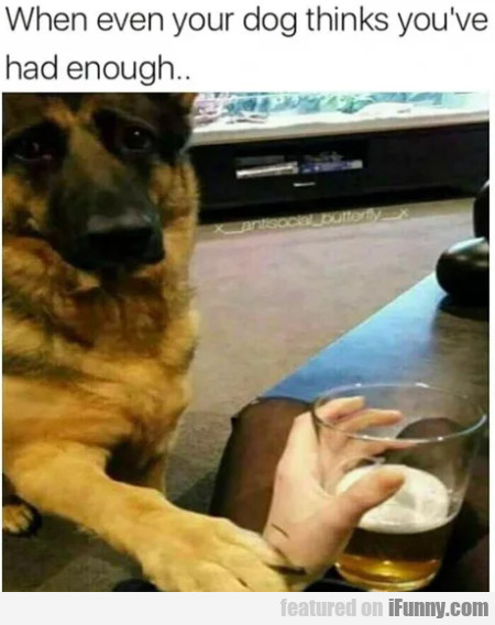 When Ever Your Dog Think You've Had Enough...